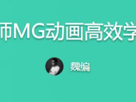 魏编《设计师MG动画高效学习法》