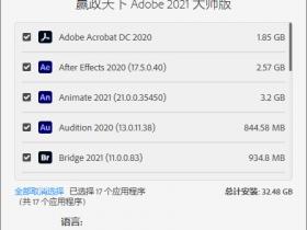 赢政天下 Adobe 2021 大师版