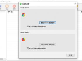 Neat Download Manager(NDM) 下载器 最新汉化版