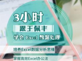 王佩丰《3小时学会Excel数据处理》